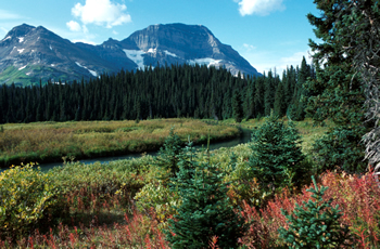 The Omineca Region Covers The North Central Interior Section Of British  Columbia. From The Interior Plateau To The Remote Wilderness Majesty Of The  Central ...